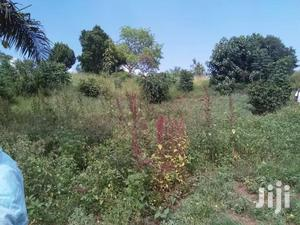 4 Acres Of Land Located In Nakassajja Up For Sale Near The Tarmarc  Rd