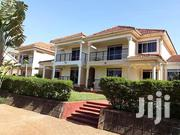 Muyega Classic Duplex House for Rent at Only 1.4m Per Month | Houses & Apartments For Rent for sale in Central Region, Kampala