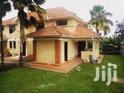 Muyenga Classic Duplex House for Rent at Only 1.3m   Houses & Apartments For Rent for sale in Central Region, Kampala