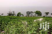 Land for Sale in Mukono | Land & Plots For Sale for sale in Central Region, Mukono