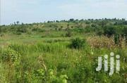 KYENJOJO BUTUNDUZI: 20 Acres  | Land & Plots For Sale for sale in Western Region, Kyenjojo