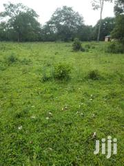 6 Acres in Namilyango,Seeta at 90m Each | Land & Plots For Sale for sale in Central Region, Mukono