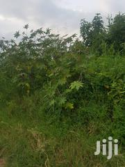 Freehold Titled Land for Sale | Land & Plots For Sale for sale in Central Region, Luweero
