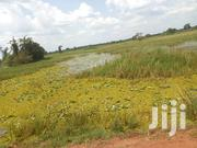 2 Square Miles in Nakaseke, at 3m an Acre | Land & Plots For Sale for sale in Central Region, Luweero
