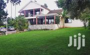 Muyenga Classic Stand Alone House for Rent at Only 1.4m Per Month   Houses & Apartments For Rent for sale in Central Region, Kampala