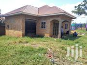 Hot Deal Here in Kibiri Gangu Busabaalla Rd 2 Homes at Give Away Price | Houses & Apartments For Sale for sale in Central Region, Kampala