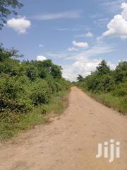 Private Mailo Land for Sale in Kikyusa | Land & Plots For Sale for sale in Central Region, Luweero