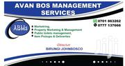 Avan Bos Management Services | Accounting & Finance CVs for sale in Central Region, Kampala
