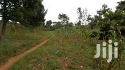 An Acre For Sale In Mukono-mbalala Good For Estate Opening | Land & Plots For Sale for sale in Central Region, Mukono
