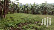 7 Acres of Agricultural Land for Sale in Kyembogo, Fort Portal. | Land & Plots For Sale for sale in Western Region, Kabalore