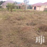 Cheap Plot On Quick Sale | Land & Plots For Sale for sale in Central Region, Mukono