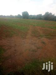 140 Acres in Kikyusa | Land & Plots For Sale for sale in Central Region, Luweero