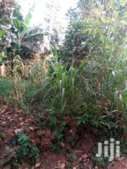 Mile Land And Land Tittle Available | Land & Plots For Sale for sale in Central Region, Luweero