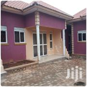 Ntinda Studio Room /Singo | Houses & Apartments For Rent for sale in Central Region, Kampala