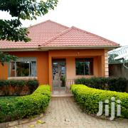 Najjera Modern Executive Two Bedroom Two Toilets House For Rent | Houses & Apartments For Rent for sale in Central Region, Kampala