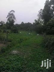 4 SQUARE MILES OF LAND ON SALE AT NAGOJJE MUKONO DISTRICT | Land & Plots For Sale for sale in Central Region, Kampala