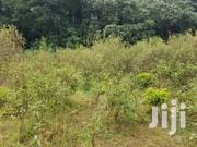 2 Acres of Industrial Land for Sale in Namanve Each at 300m   Land & Plots For Sale for sale in Central Region, Kampala