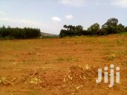 Busabala Market Plots 25x30 25x40 30x40 | Land & Plots For Sale for sale in Central Region, Kampala