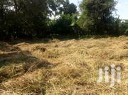 Kasangati 50/50ft Land For Sale | Land & Plots For Sale for sale in Central Region, Kampala