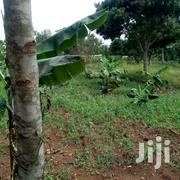 10 Acres of Land for Sale in Zirobwe at 5m Per Acre | Land & Plots For Sale for sale in Central Region, Kampala
