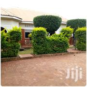 Ntinda Green 2 Bedroom House For Rent   Houses & Apartments For Rent for sale in Central Region, Kampala