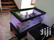 Turtle Aquarium | Pet's Accessories for sale in Central Region, Kampala