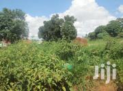 Land For Sale At 50m In Bweyogerere - Kinkonko With Its Tittle Ready. | Land & Plots For Sale for sale in Central Region, Kampala