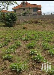 Titled Land 50/100 Just 50mtrs From the Main Road   Land & Plots For Sale for sale in Central Region, Wakiso