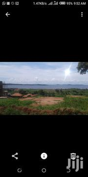 They Are 3 Acres in Kawuku-Bwerenga Touching Lake Each at 250M Ugx   Land & Plots For Sale for sale in Central Region, Kampala