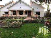 Muyenga Classic Stand Alone House for Rent at Only 1.2m Per Month | Houses & Apartments For Rent for sale in Central Region, Kampala