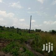 10 Acres of Land for Sale in Zirobwe Kikyusa at 4m Per Acre | Land & Plots For Sale for sale in Central Region, Kampala
