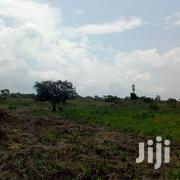 150 Acres of Land for Sale in Zirobwe Kikyusa at 3M Per Acre | Land & Plots For Sale for sale in Central Region, Kampala