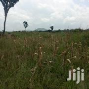 10 Acres of Land for Sale in Zirobwe Buwubi at 8M Per Acre | Land & Plots For Sale for sale in Central Region, Kampala