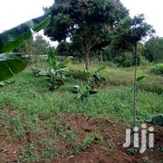 10 Acres 0F Land for Sale in Nkonko Njeru at 14M Per Acre | Land & Plots For Sale for sale in Central Region, Kampala