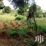 Three Acres of Private Mile Land for Sale in Nkonko Njeru at 12M Per A | Land & Plots For Sale for sale in Central Region, Kampala