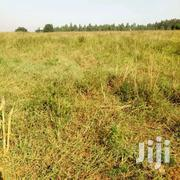 50x100ft Plot Of Land For Sale In Kira Bulindo At 25m | Land & Plots For Sale for sale in Central Region, Kampala
