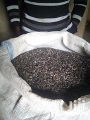 Sunflowers | Feeds, Supplements & Seeds for sale in Western Region, Kamwenge