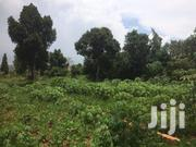 Spacious 50 By 100ft Plot For Sale In Namugongo Sonde | Land & Plots For Sale for sale in Central Region, Kampala