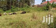 Kira Hillview Plots On Sell | Land & Plots For Sale for sale in Central Region, Kampala