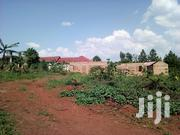 50x100 Titled Plot In Buyala Mityana Rd 500 Metres From The Main Rd | Land & Plots For Sale for sale in Central Region, Mpigi