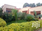 Stunning Unique And Very Upscale 2beds/2baths In Kireka-mbalwa  | Houses & Apartments For Rent for sale in Central Region, Kampala