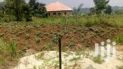 Land In Buwambo Next To YMCA | Land & Plots For Sale for sale in Central Region, Wakiso
