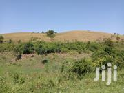 6 Acres Land For Sale | Land & Plots For Sale for sale in Central Region, Wakiso