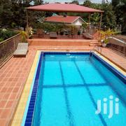 Out Standing Fully Furnished In Bugolobi 3bedrooom At 1500$ | Houses & Apartments For Rent for sale in Central Region, Kampala