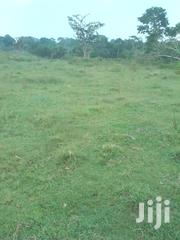 Best Quality Lakeside Land for Sale 14km Off Katosi Road   Land & Plots For Sale for sale in Central Region, Mukono