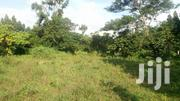 100x100 Titled Plot In Bukasa On Ssentema Rd 7km From Masanafu | Land & Plots For Sale for sale in Central Region, Wakiso