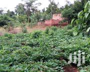 Plot For Sale In Busika   Land & Plots For Sale for sale in Central Region, Kampala