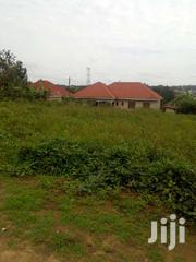 Plot For Sale 25x70 @7m Lukwaga Town Setema Road | Land & Plots For Sale for sale in Central Region, Kampala