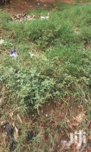 Land Title Of 4 Acres In Kamengo For Sale | Commercial Property For Sale for sale in Central Region, Mpigi