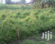 Plot In Fort Portal | Land & Plots For Sale for sale in Western Region, Kabalore